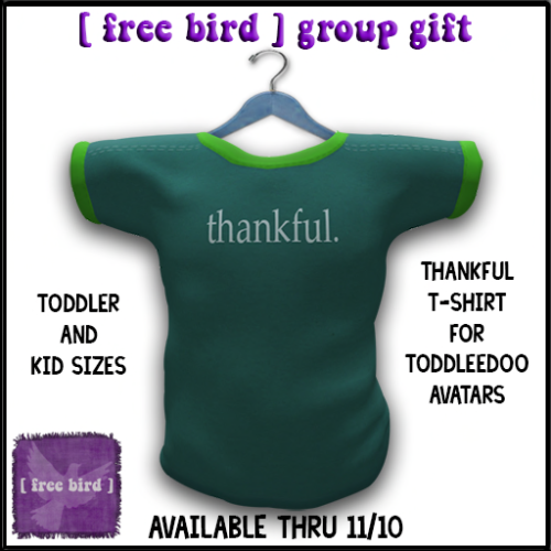 [ free bird ] Thankful TD Tshirt Group Gift