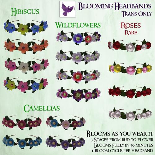 [ free bird ] Blooming Headband Gacha Ad