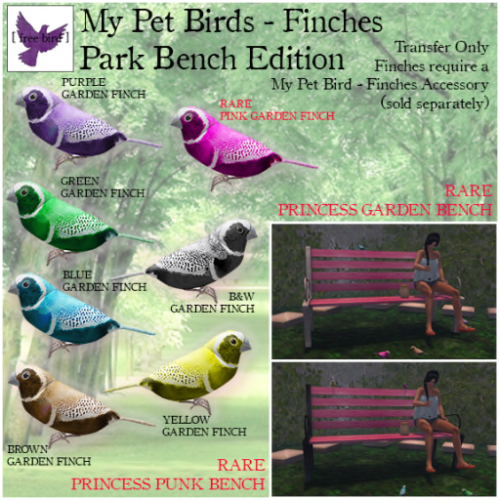 [ free bird ] My Pet Birds - Park Bench Edition Ad
