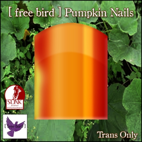 [ free bird ] Pumpkin Nails Ad