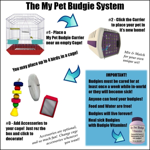[ free bird ] My Pet Budgie How To Guide