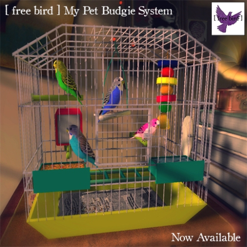 [ free bird ] My Pet Budgie System Advertisement