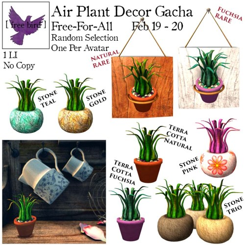 [ free bird ] Air Plant Decor Gacha Free-For-All Display Ad