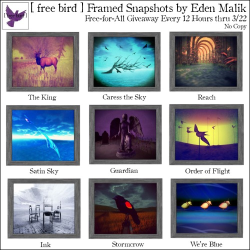 [ free bird ] Framed Snapshots Free-for-All Giveaway Ad