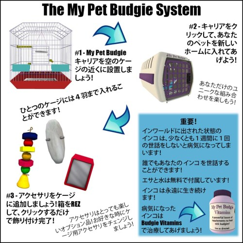 [ free bird ] My Pet Budgie Instruction Card - Japanese