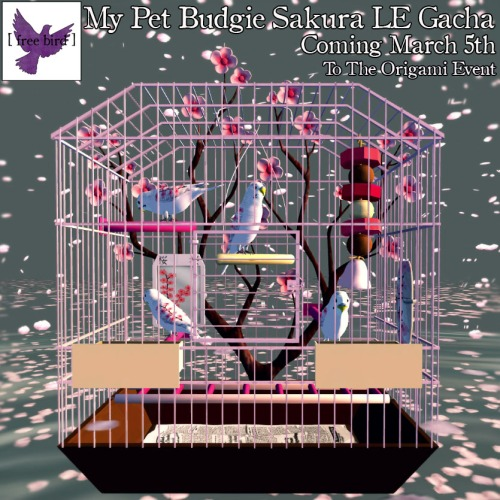 [ free bird ] My Pet Budgie Sakura LE Collection Coming March 5th