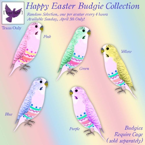 [ free bird ] Happy Easter Budgie Collection Give Away Ad