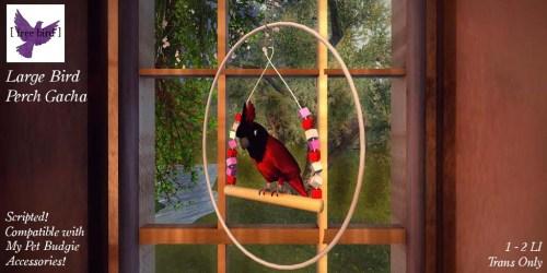 [ free bird ] Large Bird Perch Glam 1 (1)