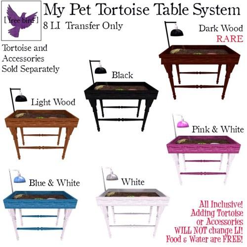 [ free bird ] My Pet Tortoise Table Gacha Key.jpg