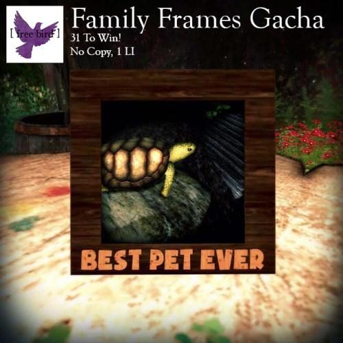 [ free bird ] Family Frames Ad.jpg