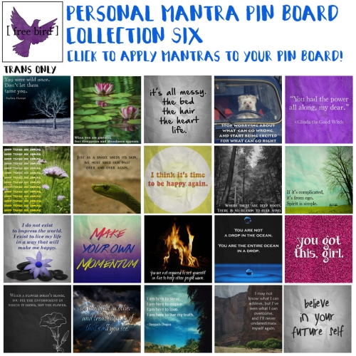 [ free bird ] Pin Board Mantras Set 6