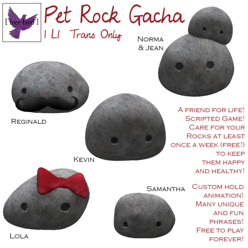 [ free bird ] Pet Rock Gacha Key.png