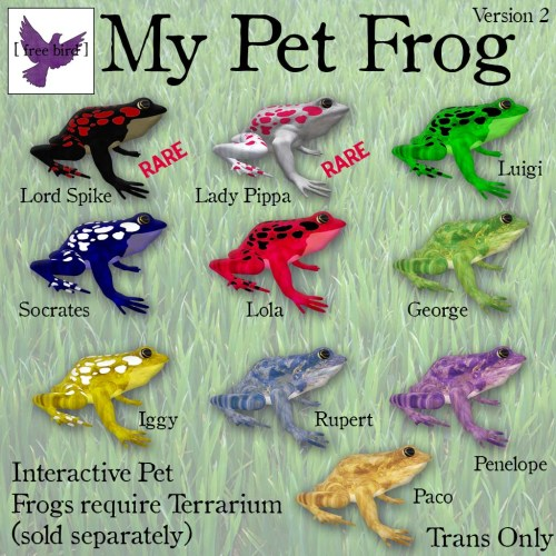 [ free bird ] My Pet Frog v2 - Frog Key.jpg