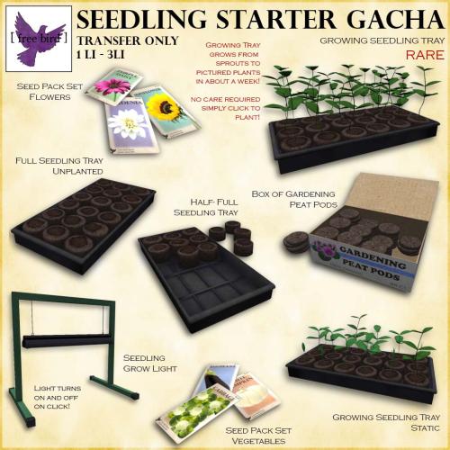 [ free bird ] Seedling Starter Gacha Key.png