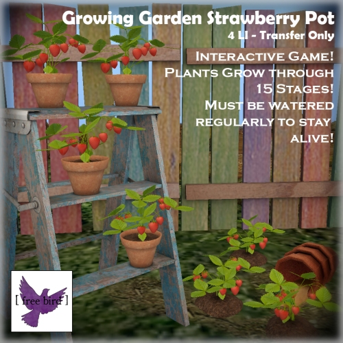 [ free bird ] Growing Garden Strawberry Plant Ad.jpg