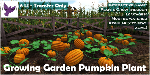 [ free bird ] Growing Garden Pumpkin Plant.png