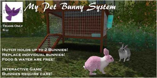 [ free bird ] My Pet Bunny Ad Web